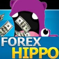 Forex Hippo Review