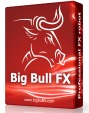 Big Bull FX Review